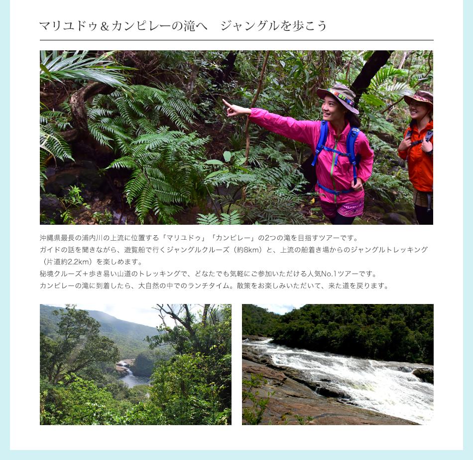 マリユドゥ&カンピレーの滝へジャングルを歩こう